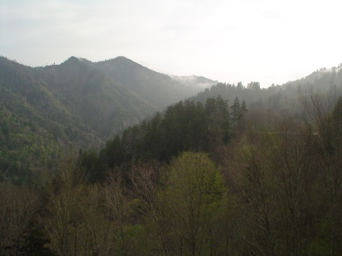 smokey_mountains_075